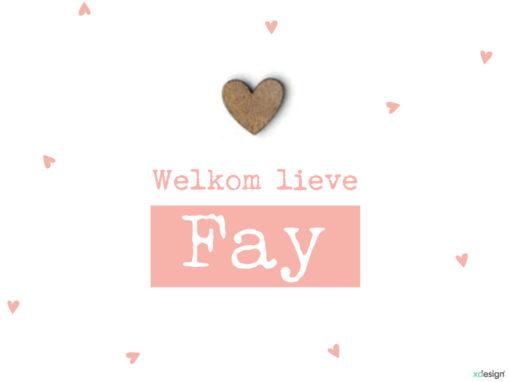 Geboortekaartje Fay