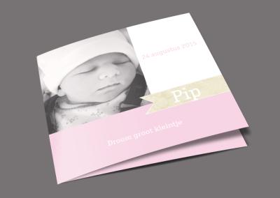 Geboortekaartje – Pip